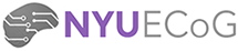 NYU ECoG Group